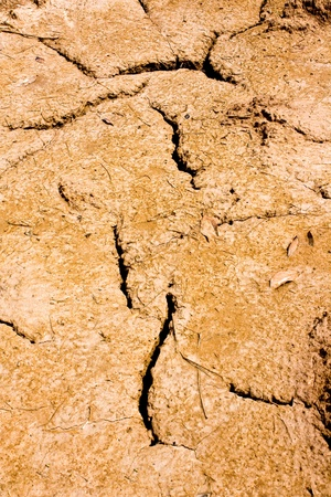 Dry brown soil texture Stock Photo - 10303702
