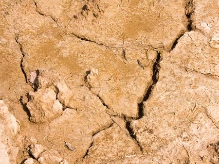 Dry brown soil texture  Stock Photo - 10303686