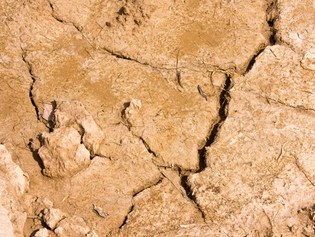 Dry brown soil texture Stock Photo - 10303686