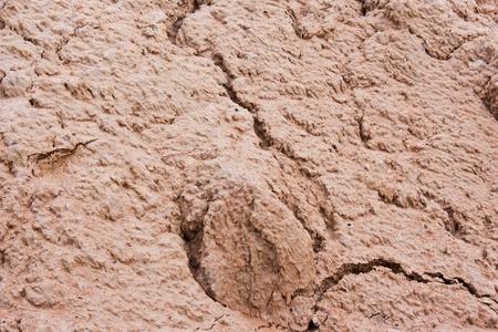 clod: soil texture