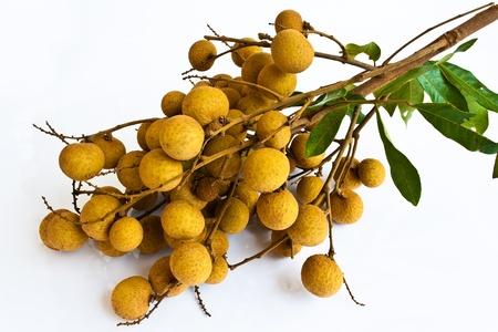 Longan fruit isolated on white background  photo