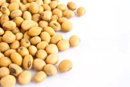 soja: granos de soja en el fondo blanco