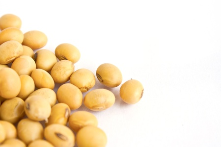 soy beans on white background photo