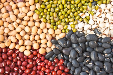 various: Various colorful dried legumes beans as background