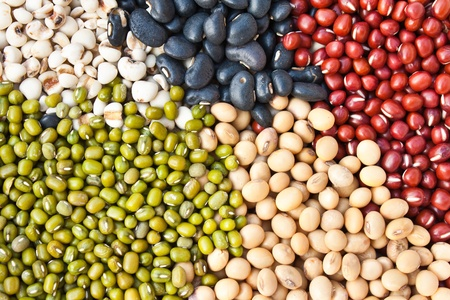 Various colorful dried legumes beans as background  photo