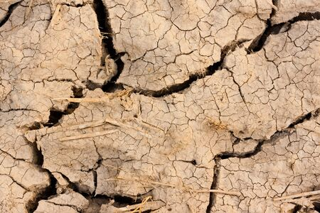 dried ground covered with cracks  background for design Stock Photo - 15490324
