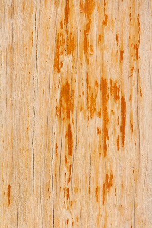 verdigris: old painted orange and brown wooden background