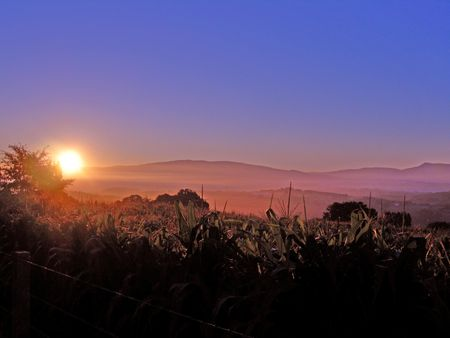 hues: golden sunrise casting colorful hues across a misty field