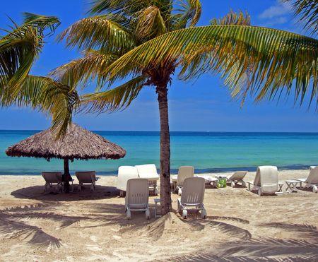 cabana: resort beach scene shaded with breezy palm trees