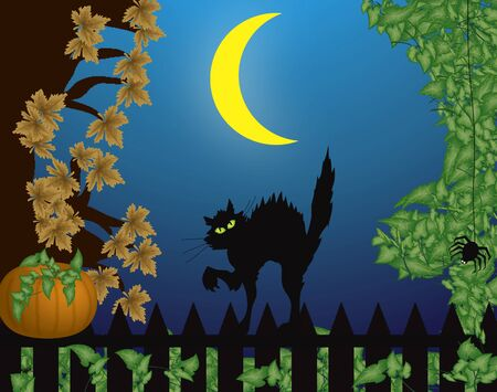 hissing: halloween scene with cat on fence and large moon