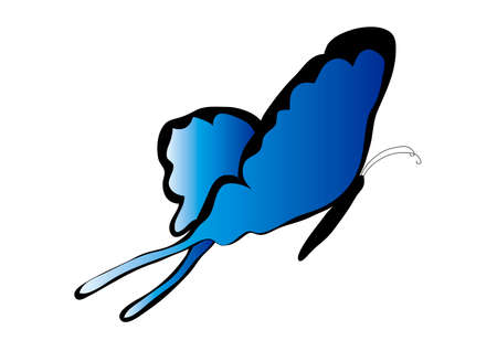 blue flying butterfly on a white background Stok Fotoğraf