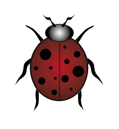 spotted: illustration of single red and black spotted ladybug on white Stock Photo