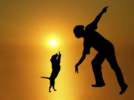 flexible woman: silhouette of dog trainer and beagle doing a trick on sunny background