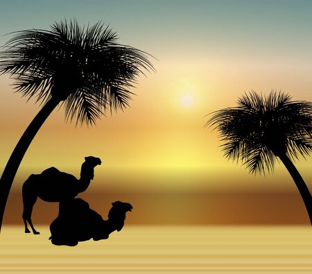 gazing: silhouette of two camels in the desert at sunrise Stock Photo