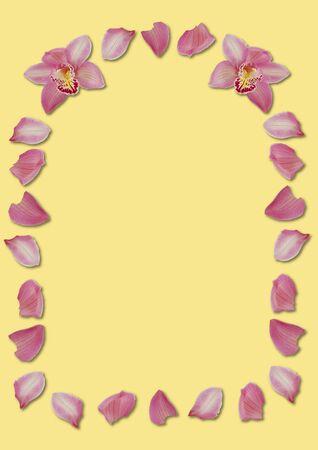 arching: arqueo rosa orqu�dea de p�talos de color amarillo en frontera