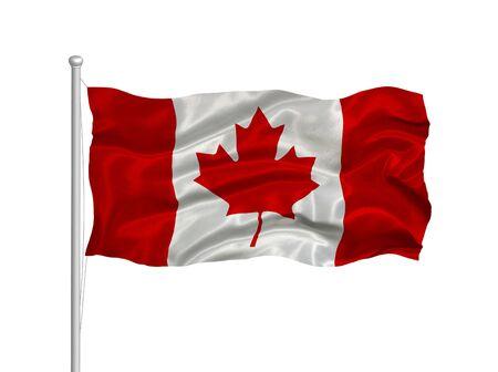 flag pole: illustration of waving Canadian flag on white