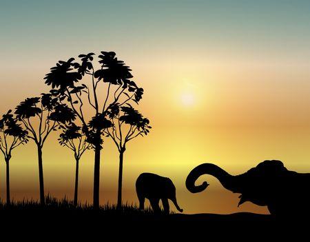 illustration of two elephants playing at sunrise