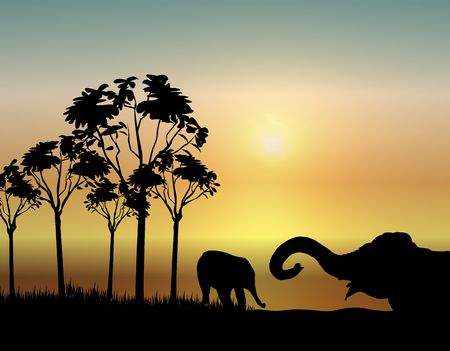 siluetas de elefantes: la ilustraci�n de dos elefantes jugando al amanecer