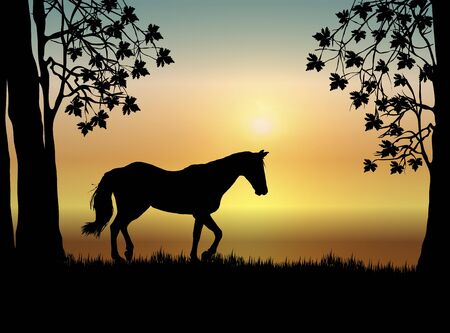 Illustration of horse in pasture at sunrise illustration