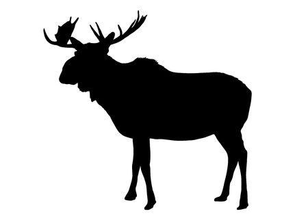 illustration of moose silhouette on white background illustration
