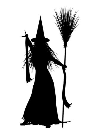 silhouette of Halloween witch on white background Фото со стока