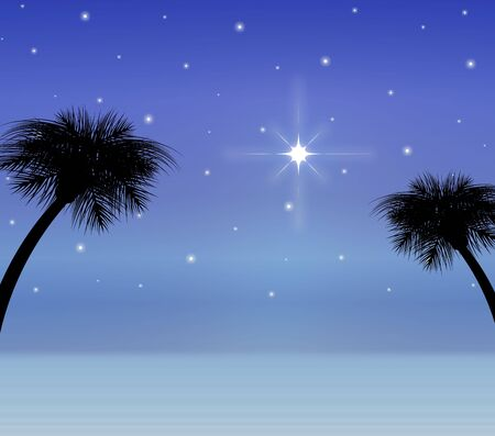 star: silhouette of desert sky with bright star