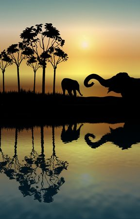 illustration of two elephants playing at sunrise