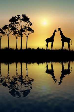 silhouette of two giraffes on grassy plain at sunrise