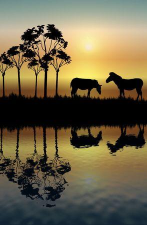 silhouette of two zebras on grassy plain at sunrise