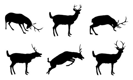 silhouette of various deer on white