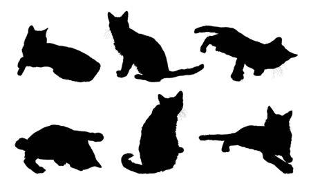 silueta de gato: las siluetas de varios gatos en blanco