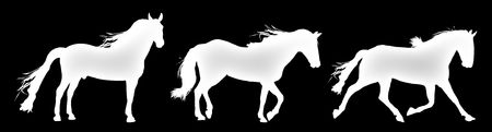 silhouette of horses standing, trotting, and galloping Stock Photo - 4593497