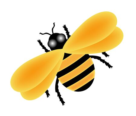 illustration of yellow bumble bee on white Stock Photo