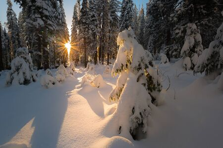 Beatuful sunset during in the winter on the mountain. Landscape Photography