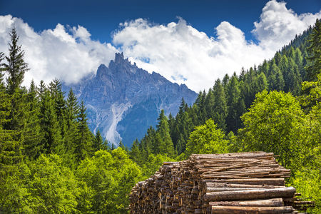 Italien, Südtirol, Hochpustertal, Nationalpark Fanes-Sennes-Prags, Pragser Tal mit Dürrenstein - Picco di Vallandro 2842 m Standard-Bild - 99323730