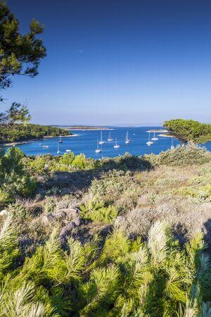 Croatia, Istria, aerial view of Cape Kamenjak