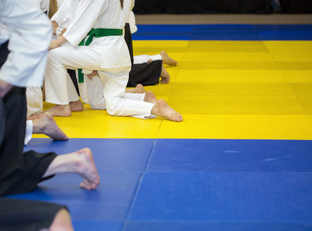 sensei: People in kimono and hakama sitting on tatami on martial arts training seminar Stock Photo