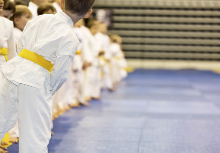 Group of children in kimono standing in a long line on tatami on martial arts training seminar