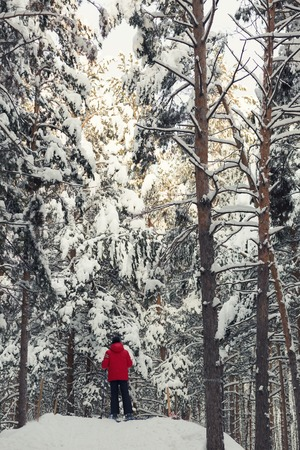 crosscountry: Cross-country skiing: a person in red cross-country skiing on a sunny winter day