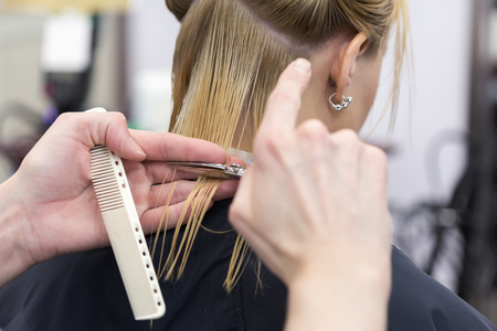 peluqueria: Un peluquero hace corte de pelo para un cliente femenino rubio en la peluquería. enfoque selectivo Foto de archivo