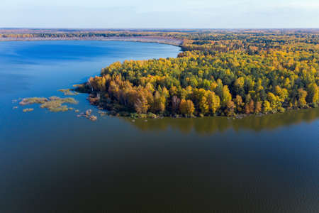 Aerial top view of beautiful lake surrounded by colorful forest in autumn Stockfoto