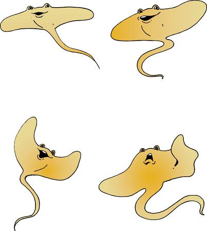 Illustration of a cartoon Stingray Illusztráció