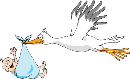 Humorous illustration of a Stork carrying a Baby Boy.