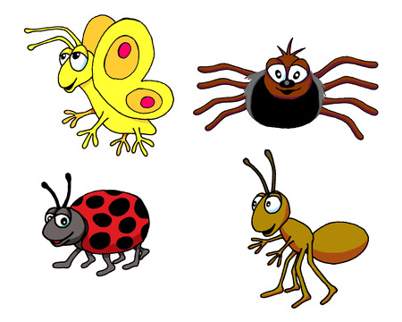 Butterfly, Spider, Ladybug, Ant