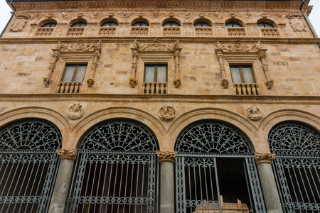 salina: Facade full view of La Salina Palace also known as Fonseca´s Palace in Salamanca Spain nowadays it is the seat of Salamanca´s Diputacion Editorial