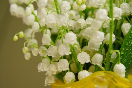 Bunch of lily of the valley in a yellow vase Stock Photo - 3256413