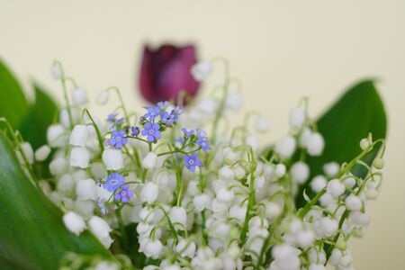 Bunch of lily of the valley closeup with forget-me-not flowers photo