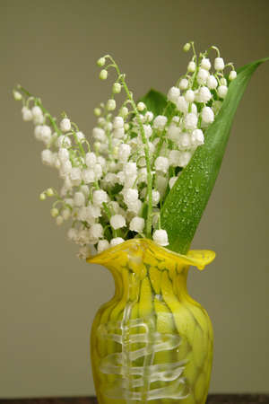 Bunch of lily of the valley in a yellow vase Stock Photo - 3352087