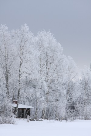 Wooden house in winter in a forest scenery, Finland photo