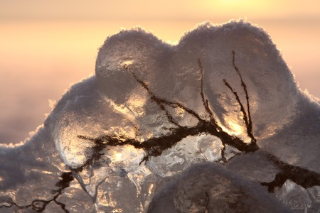 Sunset over frozen lake in winter, Finland, frozen branch detail photo